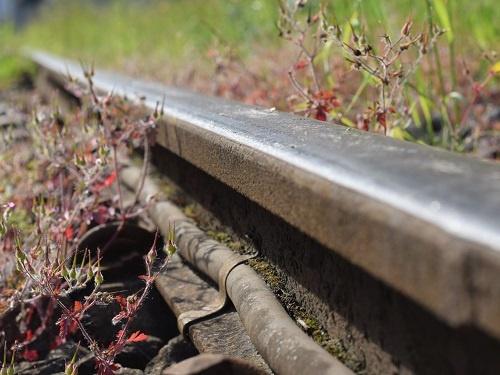 Grüne Schiene, Klimaschutz, Bahntechnik, Bahnbetrieb